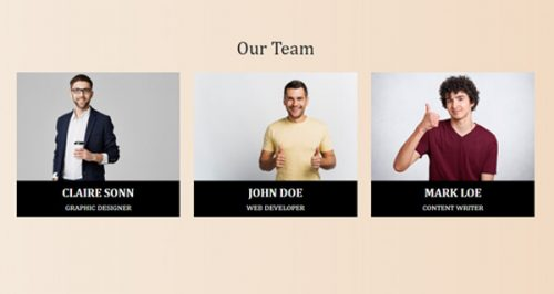 Host – Team widget